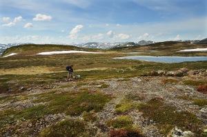 Vandring i Setesdalsheiene. Foto Anders Martinsen