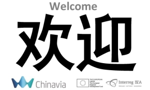 welcome_in_chinese_huan_yin