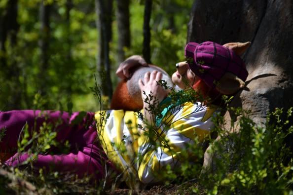 Danske barnefamilier ønskes til Hakkebakkeskogen i 2016